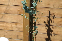 17-06-Mostgummi-Eukalyptus 02
