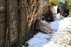 04 Winter 2018 03