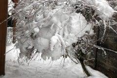 04 Winter 2018 01