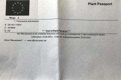 Pflanzenpass 2021 01