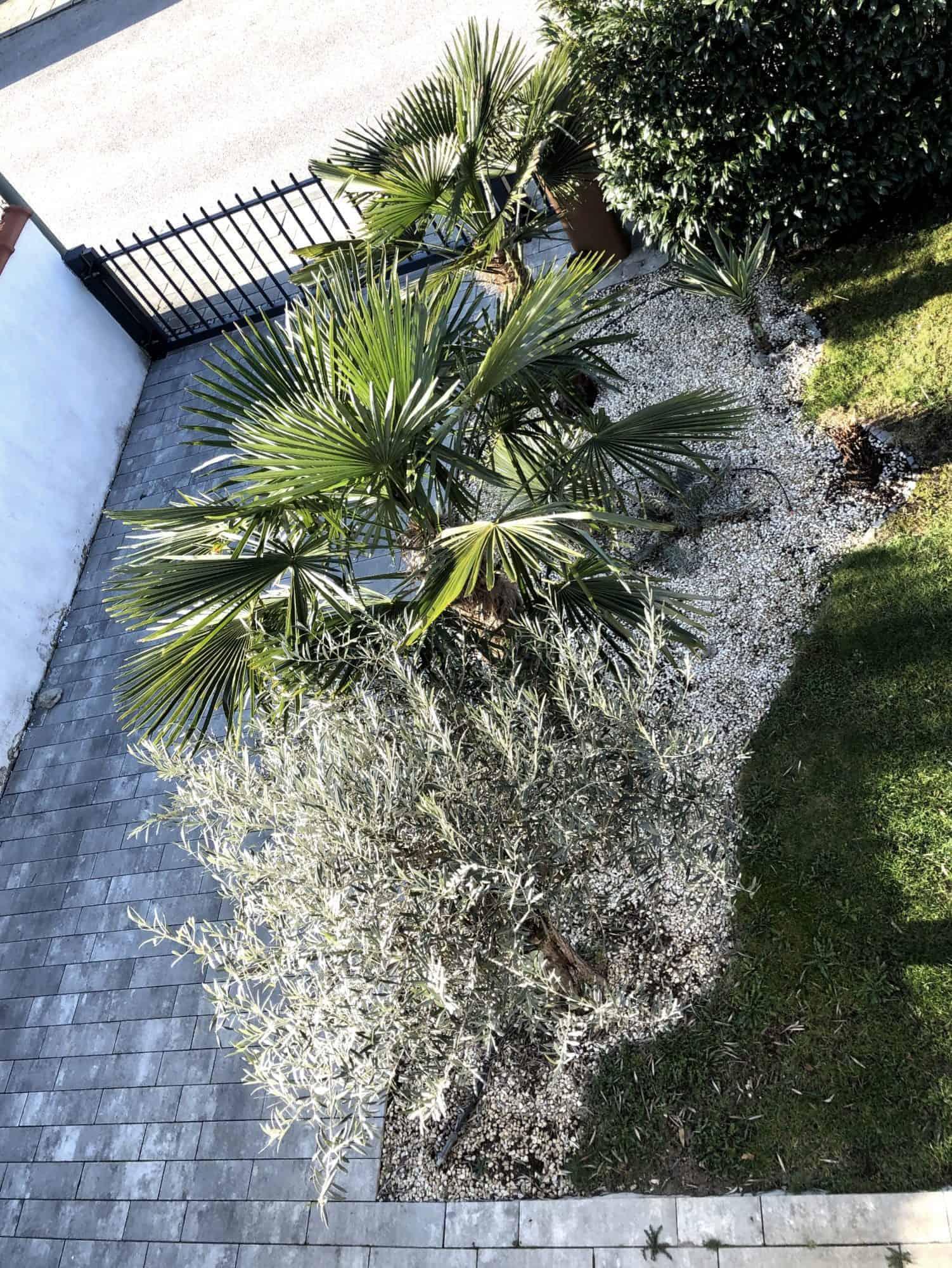 Meine Gartenphilosophie 1