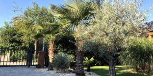 Exoten-Beratung am Gartenzaun