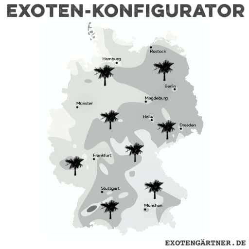 Der Exoten-Konfigurator: winterharte Exoten für den Garten 1