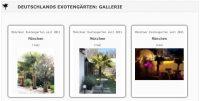 Gartenblog 7