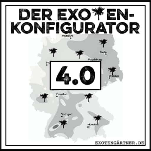 Der Exoten-Konfigurator 4.0: winterharte Exoten für Deinen Garten 1