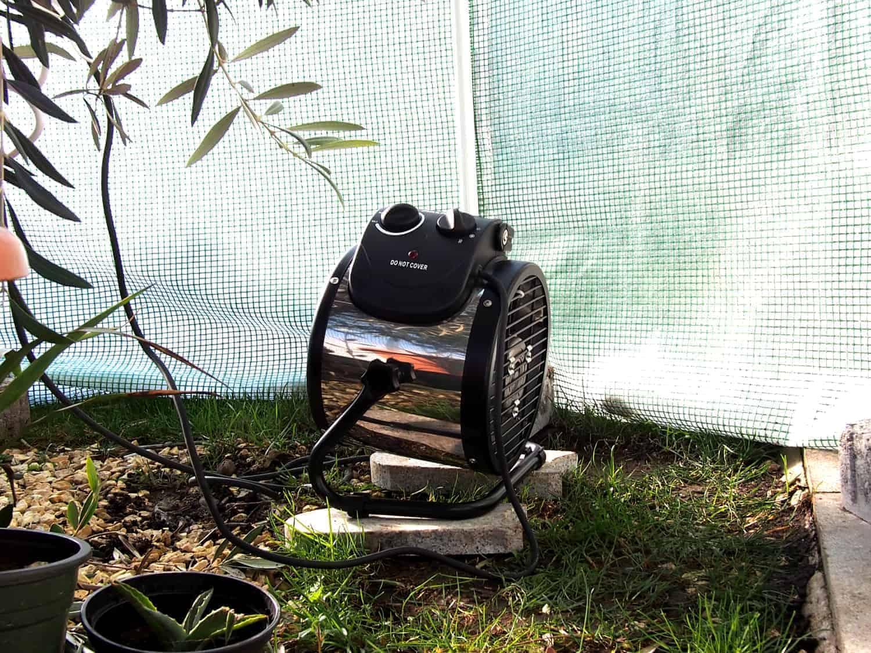 Praxistest im Garten: Palma (Bio Green) 1