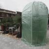 Olivenbaum: Winterschutz-Programm 10