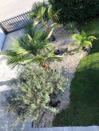 Gartenblog 52