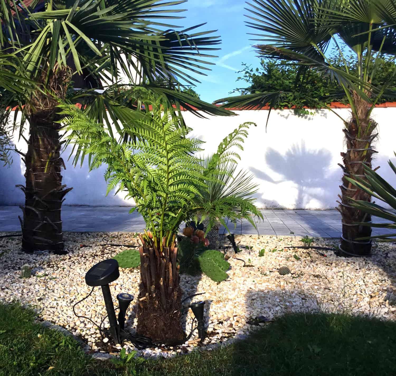 Herkunft winterharter exotischer Pflanzen 1