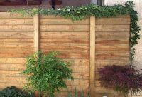 Gartenblog 251