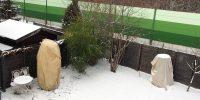 Gartenblog 202