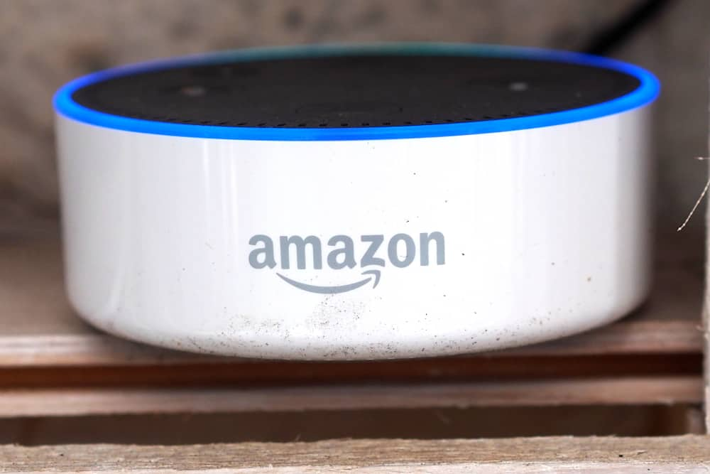 Praxistest im Garten: Echo / Echo Dot (Amazon) 1