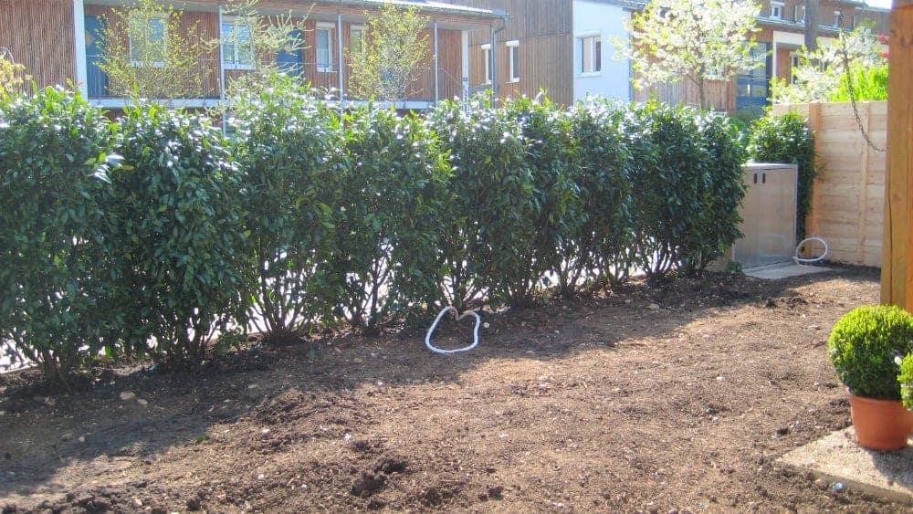 Baumassnahmen: 04'11 - Garten-Neuanlage 1