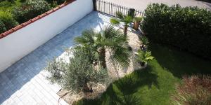 Exotengarten: aktueller Pflanzenbestand