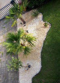 Gartenblog 243