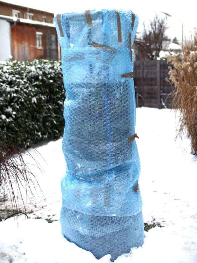 Winterschutz von exotischen Pflanzen: Checkliste 1